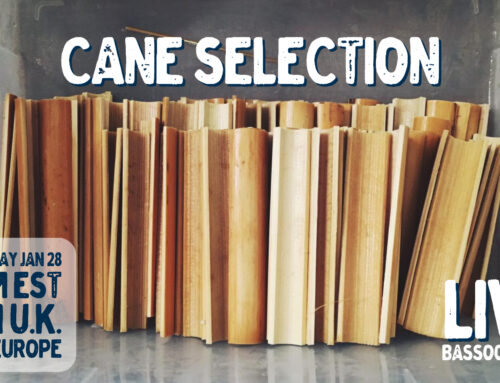 Livestream 28.1.21: Cane Selection